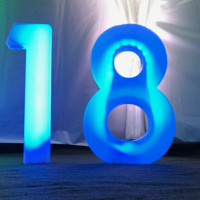 LED 3ft high Numbers